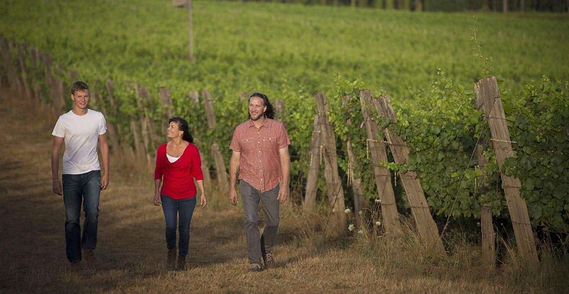 three people walking through a vineyard