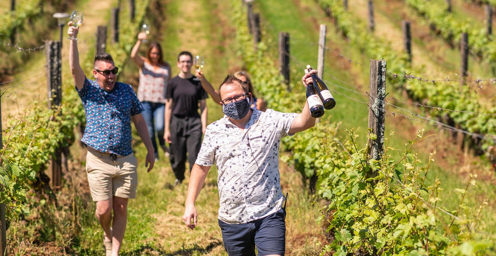 Wine lovers walking the Brooks vineyards